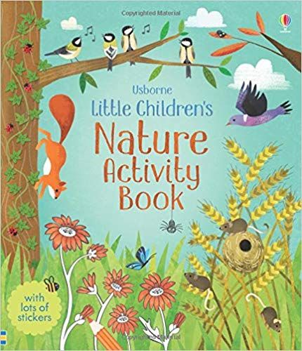 Little Children S Nature Activity Book Amazon Co Uk Rebecca Gilpin Books Nature Kids Kids Nature Activities Book Activities