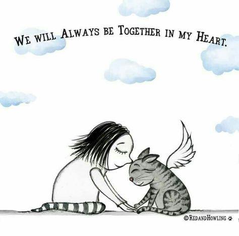 I miss my little Sammy.