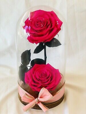 Forever Eternal Real Preserved Pink Roses Arrangement Glass Dome
