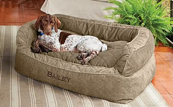 Orvis Dog Couch Dog Couch Bed Dog Bed Large