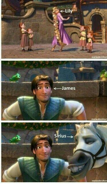 Memy Z Hp Harry Potter Memes Harry Potter Memes Hilarious Harry Potter Jokes