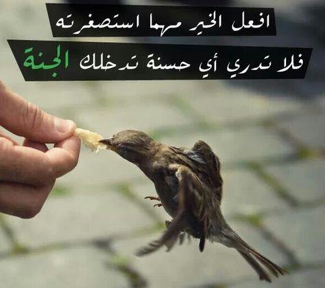 افعل الخير Islam Allah Quran