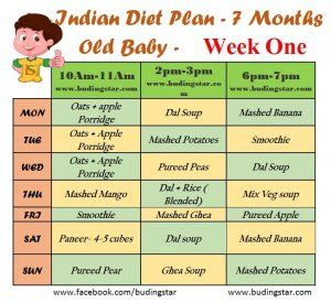 Indian Diet Plan For 7 Months Old Baby Budding Star 7 Month Old Baby 7 Months Baby Food 8 Month Old Baby