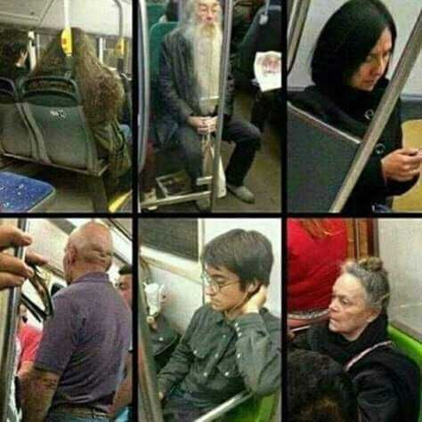 I Think I Got In The Wrong Train Harry Potter Cast Harry Potter Memes Hilarious Harry Potter Jokes