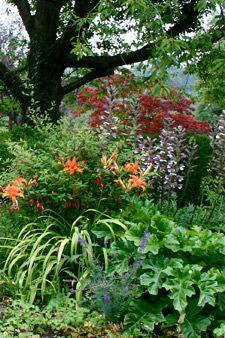 Garden Design Consultancy Beautiful Gardens Garden Design Garden Maintenance