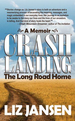 Crash Landing The Long Road Home