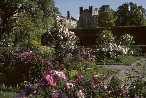 Rose Garden  96193ff2103019fdfc711d3d47725e84--spring-weddings-garden-weddings