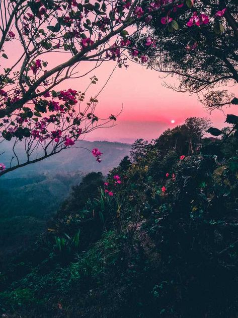 Post with 48 votes and 2117 views. Tagged with earthporn, wallpaper, landscape, beautiful world; Shared by Aztronomo. Sunset From Bandarban, Bangladesh. By u/GeorgeCrowned.