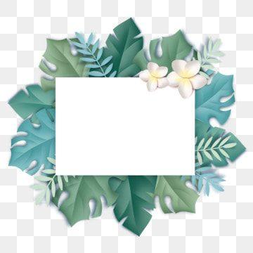 Hand Drawn Summer Elegant Plant Leaf Border Hand Painted Summer Elegant Png Transparent Clipart Image And Psd File For Free Download Di 2021 Pantai Musim Panas Vektor Gratis Latar Belakang Bunga