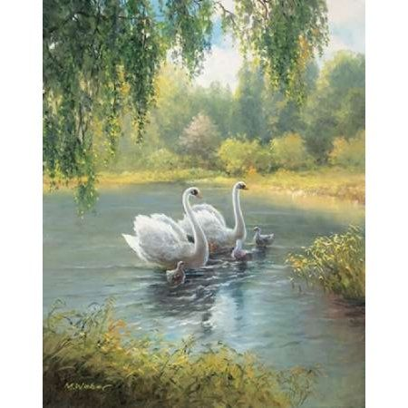 Swan Family I Canvas Art - Max Weber ()