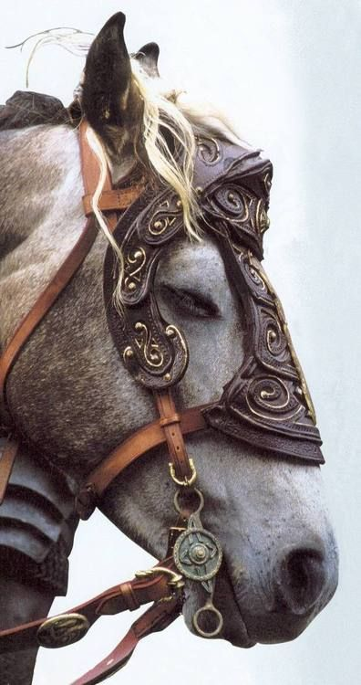Horse in leather armor