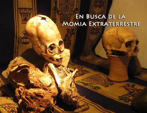 MOMIAS EXTRATERRESTRES 96363832617724fc05e5439c6d845ffc