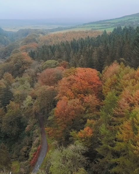 one of my favourite drone shots, taken on the Isle of Man. I love the autumn colours. #drone #autumn #wilderness #travel #mavicpro