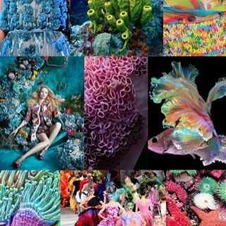 S/S 2017 colors & patterns trends: WILD OCEAN - Deep sea inspirational board corals, fishes, star fishes, dresses inspired by them