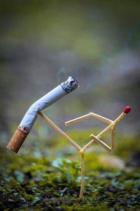 No Smoking - Kung Fu Style.. 😑