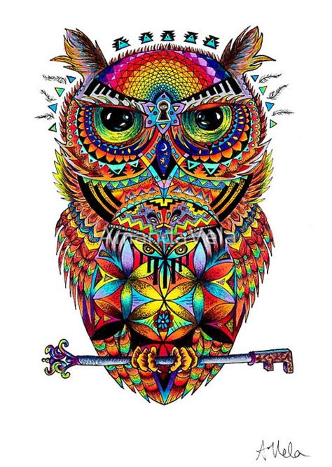 Owl Art Spirit Animal Art Spiritual Art Flower of Life Visionary Art Mandala Psychedelic Art Tattoo Zentangle Reclaimed Wood Frame Canvas