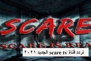 تردد قناة Scare Tv الجديد 2021 على النايل سات In 2021 Neon Signs Scared Signs