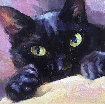 Blackcat27 by Katya Minkina Oil ~ 8 x 8