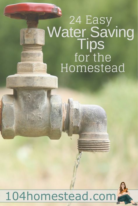 Water conservation has a great number of benefits. The homestead is ripe for opportunities to conserve water.