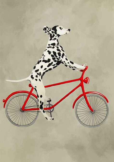 170 Best Dalmatian Images On Pinterest Postcards Adventure And