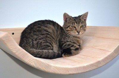 Polka Dla Kota Allegro Pl Wiecej Niz Aukcje Najlepsze Oferty Na Najwiekszej Platformie Handlowej Cats Animals