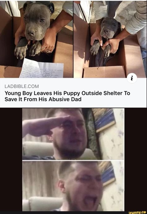 Things that make you go AWW! Like puppies, bunnies, babies, and so on. A place for really cute pictures and videos! Really Funny Memes, Stupid Funny Memes, Funny Relatable Memes, Sweet Stories, Cute Stories, Cute Funny Animals, Funny Cute, Haha, Human Kindness