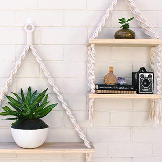 На данном изображении может находиться: растение и в помещении