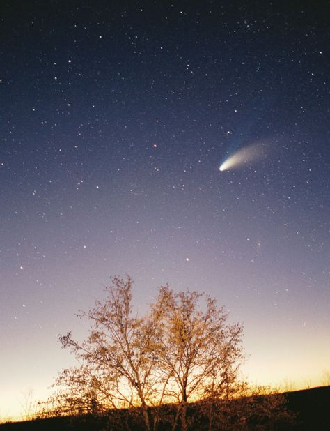 Comet Hale-Bopp (~60 km), which was visible with the naked