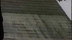 How To Remove Black Mold From Roof Shingles In 2020 Roof Cleaning Roof Shingles Clay Roof Tiles