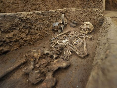 """Graveyard of """"Giants"""" Found in China"""