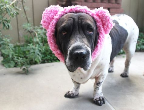 9 Free Crocheted Ear Warmer Patterns For Winter Crochet Teddy