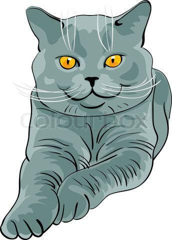 Stock Vector Of A British Blue Cat More Cats Ozzicat Com Au Facebook Com Ozzi Blue British Cat Cats Fa British Blue Cat British Shorthair Blue Cats