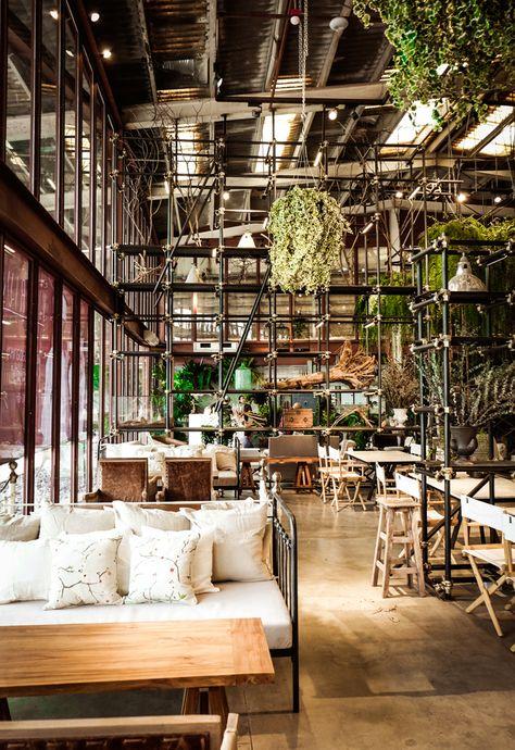 vivarium-restaurant-bangkok--hypothesis-thailand- Rénover- Transformer -ancien entrepôt devenu le cadre de ce restaurant à Bangkok