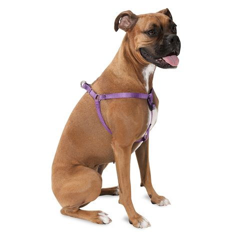 Majestic Pet Step In Harness Extra Large Purple Pet Steps
