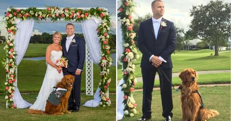 Therapy Dog Serves As Best Man At Wounded Veterans Wedding Save A