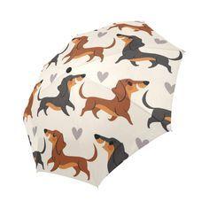 Umbrella Dachshund C Umbrella Dachshund Cute Dachshund Breed