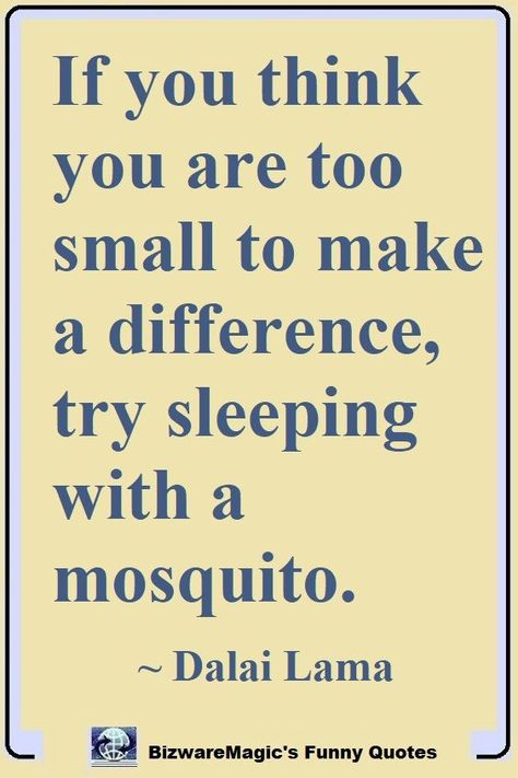 If you think you are too small to make a difference, try sleeping with a mosquito. Wisdom Quotes, Me Quotes, Motivational Quotes, Funny Quotes, Inspirational Quotes, Happiness Quotes, Famous Quotes, Daily Quotes, Great Quotes