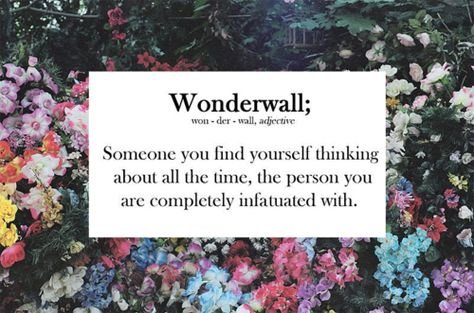 wonderwall Or it could be a wall made of wonder bread. I prefer the second option.