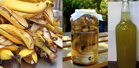 банановая кожура как удобрение для комнатных