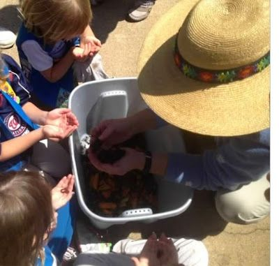 Worm composting- Flower Garden Journey for Daisy Girl Scouts -OCD Girl Scout Leaders