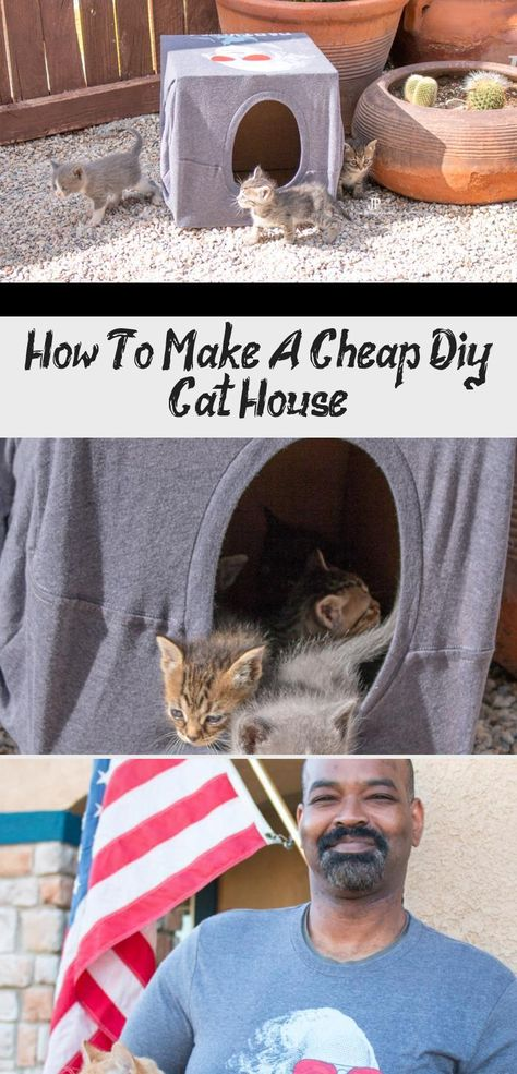 "Baby Kitties!! How to make a cheap DIY cat house using a t-shirt and a box. Your kitties will love this. This is a perfect playhouse for kittens or adult cats alike using an upcycled box. PLUS how a t-shirt can help you ""save the kitties"". #SmartFunDIy #Cats #Cathouse #Catlover #Kittens #Kitties #cat #CrazyCatLady #TShirt #DIY #Box #shirts #Upcycled #catsPaw #catsFacts #catsIdeas #Whitecats #Sphynxcats"