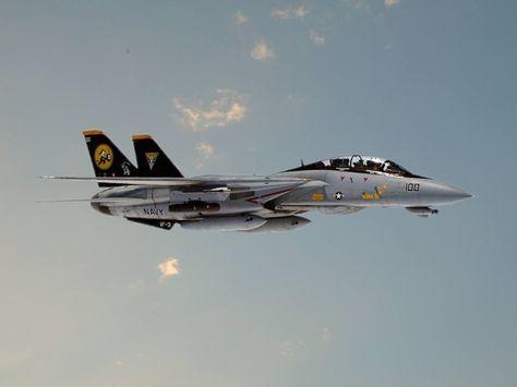 VF-191 SATANS KITTENS US NAVY Grumman F-14 TOMCAT Squadron Tail Patch