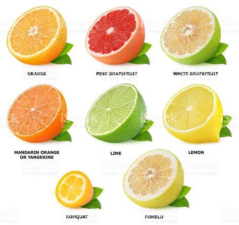 4f30361df Colección de frutas cítricas mitades Aislado en blanco foto de stock libre  de derechos