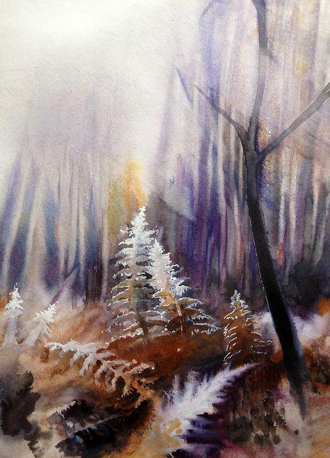 Pierre Renollet Serie Sur Les Contrejours Paysages Sous Bois