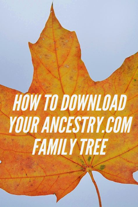 How to Download Your Ancestry Family Tree -