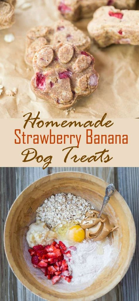 These homemade dog treats are loaded with strawberries, bananas, peanut butter, and oats. Everything you need to keep your dog happy and energized!|The Cozy Cook| #DogTreats #PeanutButter #Strawberries #Pets #Dogs #Banana #Homemade #Gifts