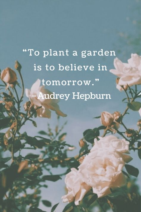 14 Inspirational Flower Quotes for Happier Days - DIY Darlin'