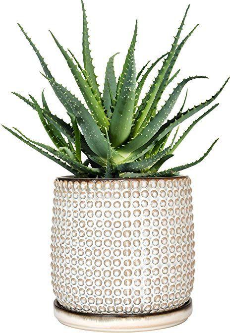 Amazon Com Beaded Stoneware Pot With Drainage Hole And Tray Smoke White Ceramic Plant Pot 6 Inch In 2020 Ceramic Plant Pots Indoor Flower Pots Ceramic Flower Pots