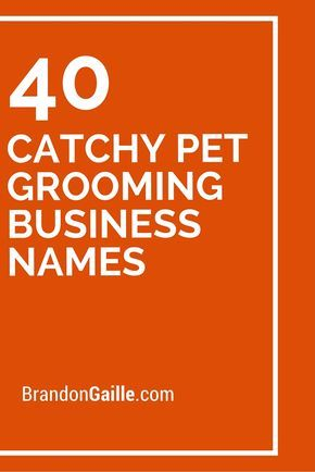 41 Catchy Pet Grooming Business Names Pet Grooming Business Pet Grooming Dog Grooming Business