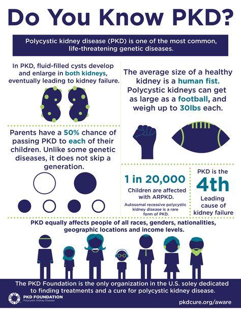 September 3rd is PKD Awareness Day. Do you know PKD?